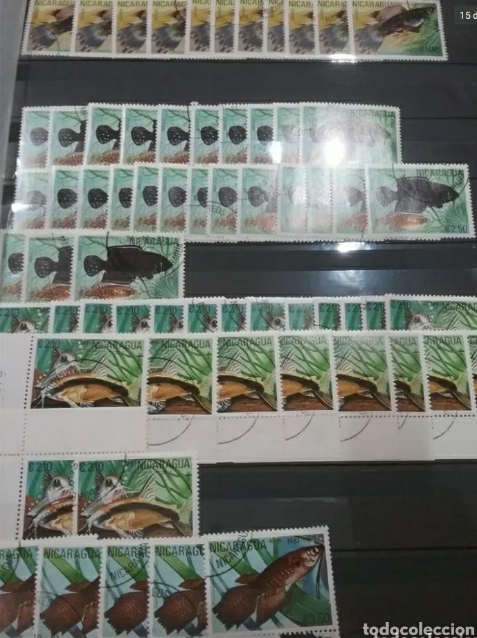 Sellos: Sellos Colección R. Nicaragua mtdos y nuevos/series campletas/década 80/stock/flora/faun/arte/Clasi3 - Foto 15 - 224873538