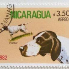 Sellos: SELLO DENICARAGUA 3,5 C- 1982 - PERROS - USADO SIN SEÑAL DE FIJASELLOS. Lote 254048065