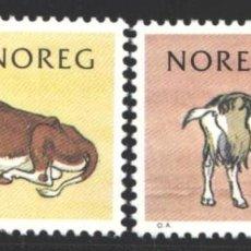 Sellos: NORUEGA, 1981 YVERT Nº 790 / 791 /**/, FAUNA, VACA, CABRA,. Lote 199190383