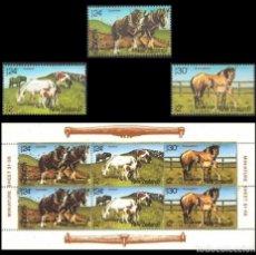 Sellos: NUEVA ZELANDA 1984 - CABALLOS - YVERT Nº 876-878**+HB 50**. Lote 121966315