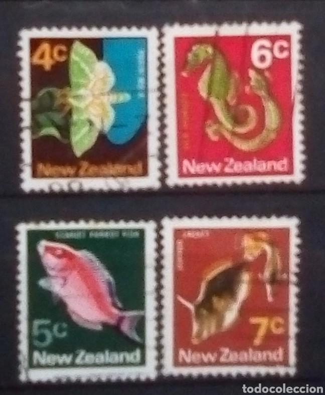 NUEVA ZELANDA FAUNA MARINA SERIE DE SELLOS USADOS (Sellos - Extranjero - Oceanía - Nueva Zelanda)
