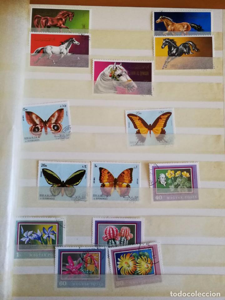 Sellos: Álbum de sellos para coleccionista - Incluye 317 sellos de olimpiadas y animales - 30 x 23 cm - Foto 8 - 86020384