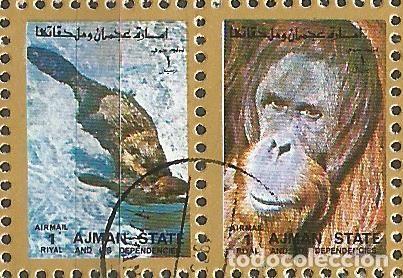 Sellos: AJMAN STATE - 1973 - 2 BLOQUES DE CADA 16 SELLOS DE ANIMALES SALVAJES - 1973 - SELLADO - Foto 10 - 237659515