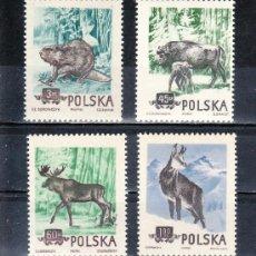 Sellos: POLONIA 785/8 SIN CHARNELA, FAUNA, ANIMALES DEL BOSQUE POLACO, . Lote 20547430