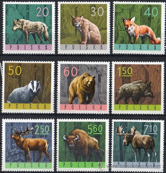 POLONIA AÑO 1965 YV 1483/91*** ANIMALES DEL BOSQUE - FAUNA - MAMÍFEROS - CAZA - NATURALEZA (Sellos - Extranjero - Europa - Polonia)