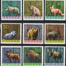 Sellos: POLONIA AÑO 1965 YV 1483/91*** ANIMALES DEL BOSQUE - FAUNA - MAMÍFEROS - CAZA - NATURALEZA. Lote 26288204