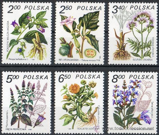 POLONIA AÑO 1980 YV 2523/28* PLANTAS MEDICINALES - FLORA - NATURALEZA (Sellos - Extranjero - Europa - Polonia)