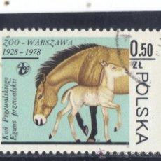 Sellos: POLONIA - 1978 - YVERT - 2414 ( USADO ). Lote 38407190