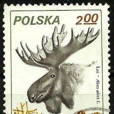 Sellos: POLONIA 1981- YV 2563. Lote 52004697