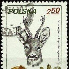 Sellos: POLONIA 1981- YV 2564. Lote 52004707