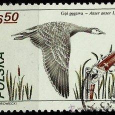 Sellos: POLONIA 1981- YV 2566. Lote 138966462