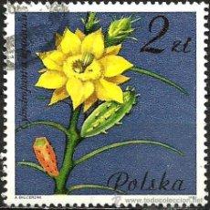 Sellos: POLONIA 1981- YV 2601. Lote 52004852