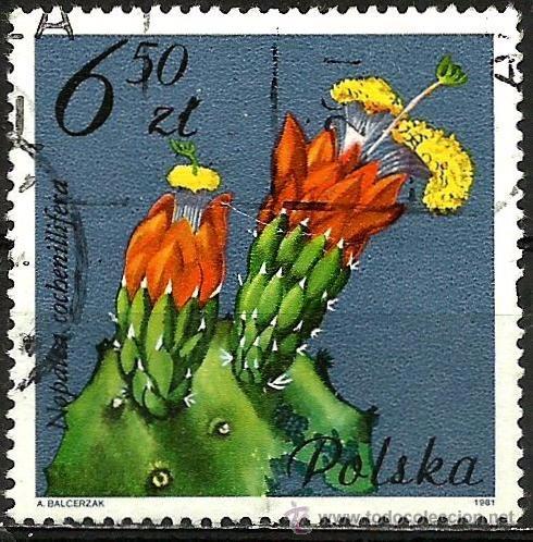 POLONIA 1981- YV 2604 (Sellos - Extranjero - Europa - Polonia)