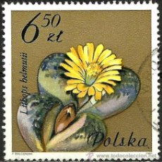 Sellos: POLONIA 1981- YV 2605. Lote 52004909