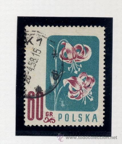 Sellos: POLONIA - LOTE DE 120 SELLOS DISTINTOS ENTRE 1939 Y 1959 - USADOS Y NUEVOS - VER FOTOS DE TODOS - - Foto 53 - 52734381