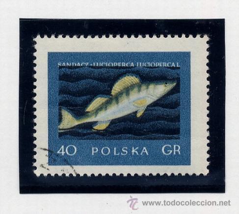 Sellos: POLONIA - LOTE DE 120 SELLOS DISTINTOS ENTRE 1939 Y 1959 - USADOS Y NUEVOS - VER FOTOS DE TODOS - - Foto 61 - 52734381