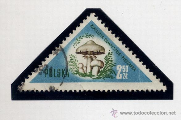 Sellos: POLONIA - LOTE DE 120 SELLOS DISTINTOS ENTRE 1939 Y 1959 - USADOS Y NUEVOS - VER FOTOS DE TODOS - - Foto 73 - 52734381