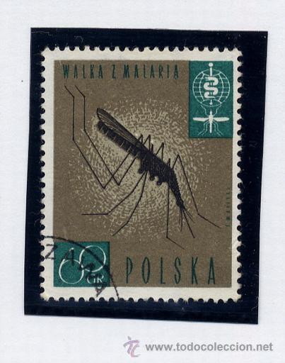 Sellos: POLONIA - LOTE DE 120 SELLOS DISTINTOS ENTRE 1959 Y 1964 - USADOS Y NUEVOS - VER FOTOS DE TODOS - - Foto 27 - 52734652