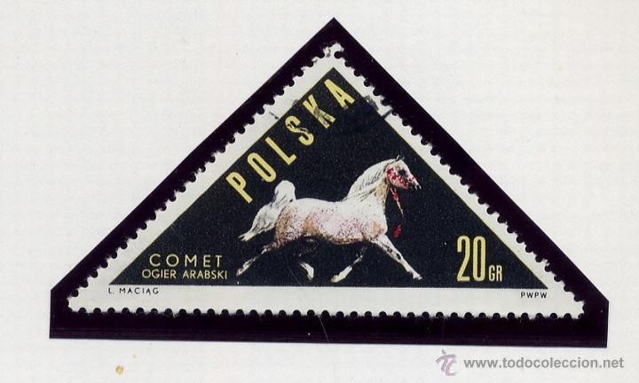 Sellos: POLONIA - LOTE DE 120 SELLOS DISTINTOS ENTRE 1959 Y 1964 - USADOS Y NUEVOS - VER FOTOS DE TODOS - - Foto 42 - 52734652