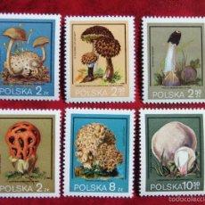 Sellos: POLONIA - SETAS Y HONGOS. Lote 56515066
