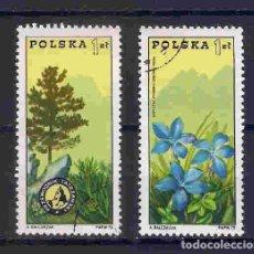 Sellos: FLORES DE POLONIA. SELLOS AÑO 1975. Lote 210972041