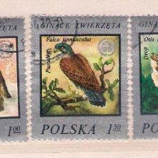 Sellos: ANIMALES EN PELIGRO DE EXTINCIÓN.POLONIA. SELLOS AÑO 1977. Lote 87371556
