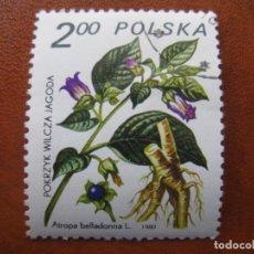 Sellos: POLONIA, 1980 PLANTAS MEDICINALES, YVERT 2523. Lote 159494246