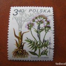 Sellos: POLONIA,1980 PLANTAS MEDICINALES, YVERT 2525. Lote 159494718