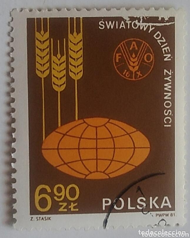 SELLO POLONIA POLSKA 2592 AÑO 1981 USADO (Sellos - Extranjero - Europa - Polonia)