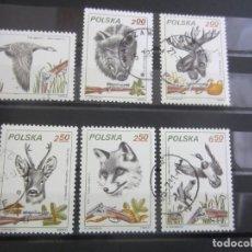 Sellos: POLONIA 1981 - 6 V. USADO. Lote 180278092