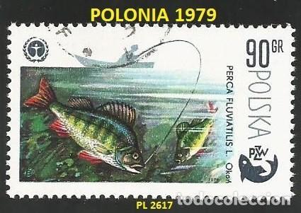 POLONIA 1979 - PL 2617 - 1 SELLO NUEVO - TEMA PECES (Sellos - Extranjero - Europa - Polonia)