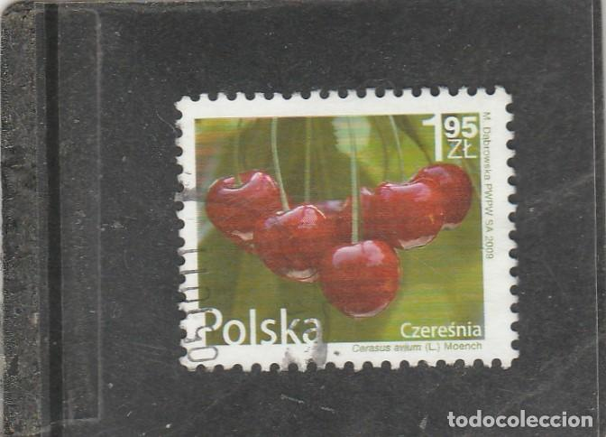 POLONIA 2009 - YVERT NRO. 4165 - USADO (Sellos - Extranjero - Europa - Polonia)