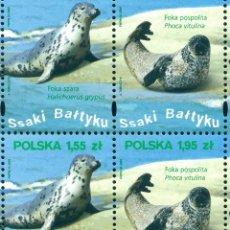 Sellos: PL-4440 POLAND 2009 MNH BALTIC SEA WILDLIFE - FULL SHEET SEALS. Lote 221674665