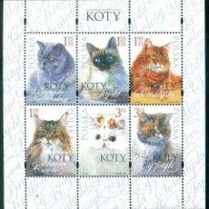 Sellos: PL-4474 POLAND 2010 MNH CATS CATS. Lote 221674675