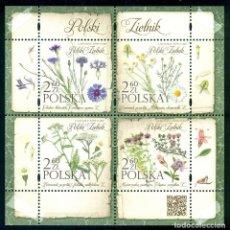Sellos: PL-4941 POLAND 2017 MNH FLORA - POLISH HERBARIUM FLOWERS. Lote 221674691