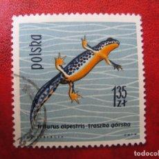 Timbres: +POLONIA, 1963, REPTILES Y ANFIBIOS, YVERT 1265. Lote 223114076