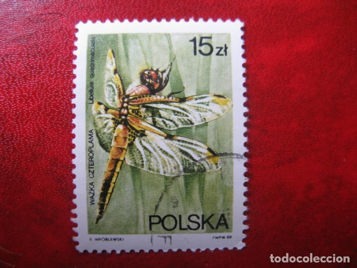 +POLONIA, 1988,FAUNA, LIBELULAS, YVERT 2942 (Sellos - Extranjero - Europa - Polonia)