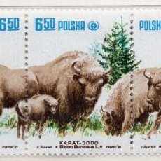 Sellos: POLONIA , 1981 STAMP , MICHEL 2764-2768. Lote 269691683