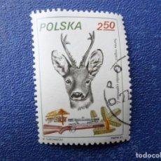 Sellos: *POLONIA, 1981, CAZA, CIERVO, YVERT 2565. Lote 289365298