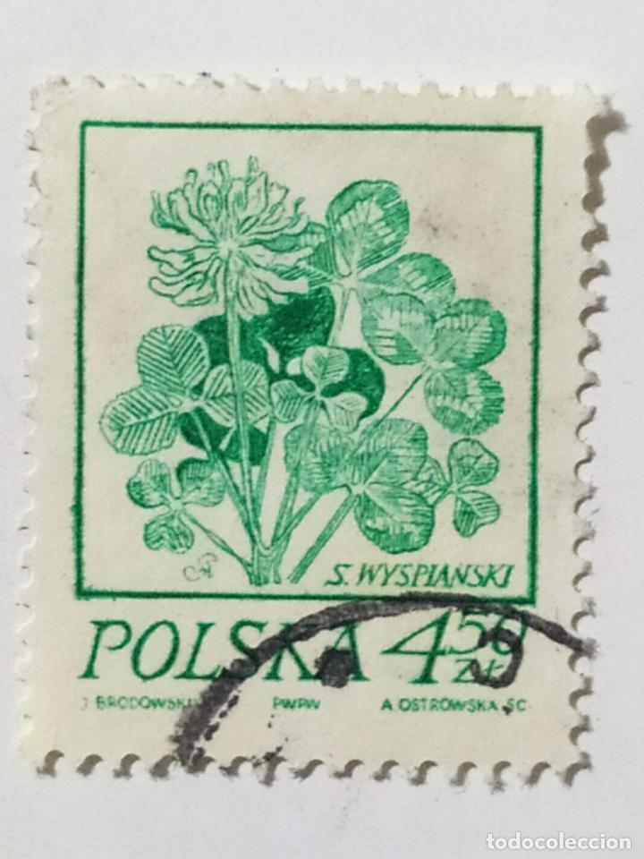 SELLO DE POLONIA 4,50 ZT - 1974 - FLORES - USADO SIN SEÑAL DE FIJASELLOS (Sellos - Extranjero - Europa - Polonia)