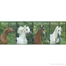 Sellos: ⚡ DISCOUNT POLAND 2007 POLISH ARABIAN HORSES MNH - HORSES. Lote 289925733