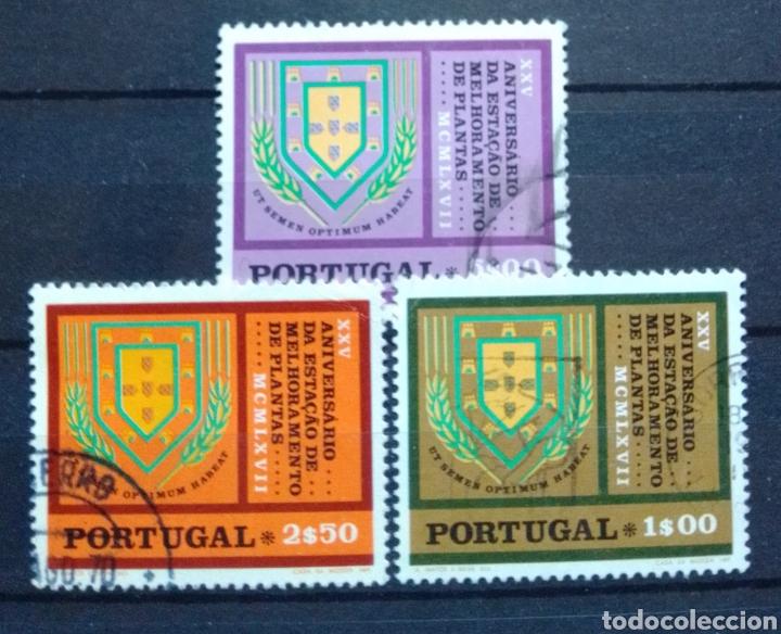 PORTUGAL BOTÁNICA SERIE DE SELLOS USADOS (Sellos - Extranjero - Europa - Portugal)