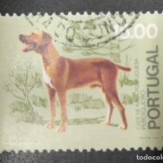 Sellos: PORTUGAL 1981. PORTUGUESE POINTER (CANIS LUPUS FAMILIARIS). YT:PT 1502. Lote 244919730