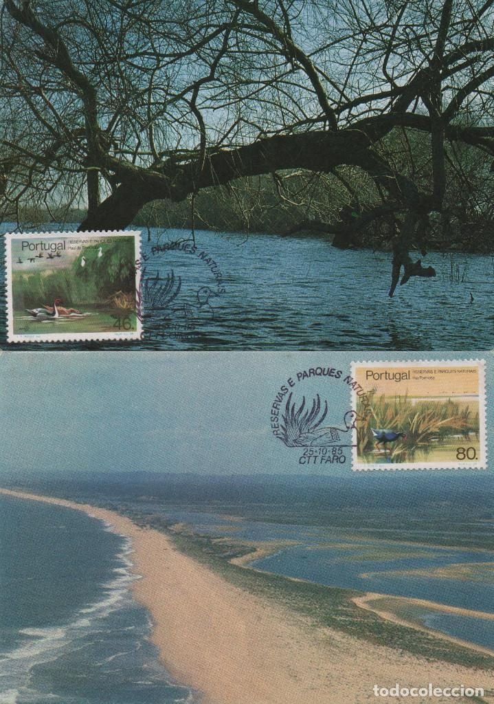 Sellos: Serie completa de Portugal de 1985 en tarjetas tipo máximas. Tema: parques naturales - Foto 2 - 267827599