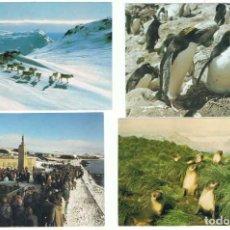 Sellos: LOTE DE 13 POSTALES DE ISLAS FALKLAND CONMEMORATIVAS, PRIMER DÍA, ETC. AÑOS 80. Lote 96995647