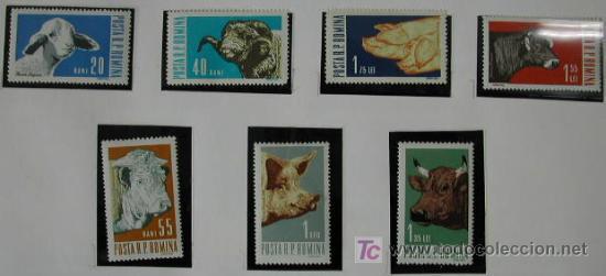 RUMANIA AÑO 1962 SERIE DE 7 SELLOS DE FAUNA MAMIFEROS DOMESTICOS (Sellos - Extranjero - Europa - Rumanía)