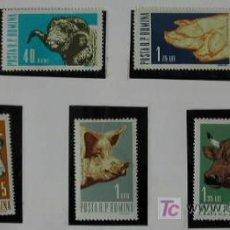Sellos: RUMANIA AÑO 1962 SERIE DE 7 SELLOS DE FAUNA MAMIFEROS DOMESTICOS. Lote 22300762