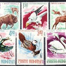 Sellos: RUMANIA 3021/6 SIN CHARNELA, FAUNA, CAZA, AVES, PAJAROS, PROTECCION DE LA NATURALEZA,. Lote 178931241