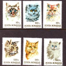 Sellos: RUMANIA / ROMANIA / ROUMANIE.***.AÑO 1993.YVERT NR.4076/4081.FAUNA.ANIMALES.GATOS.. Lote 183276043