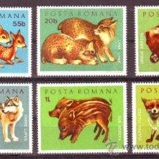 Selos: RUMANIA / ROMANIA / ROUMANIE.***.AÑO 1972.YVERT NR.2674/2679.FAUNA.ANIMALES SALVAJES.OSO,LOBO,JABALI. Lote 31172669